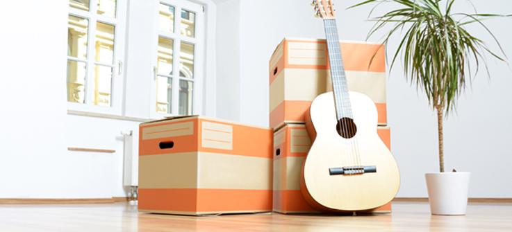 vide maison d ratisation et desinsectisation pr s de bergerac dordogne 24 spn. Black Bedroom Furniture Sets. Home Design Ideas
